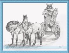 rytir na koni 05