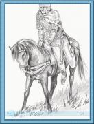 rytir na koni 26