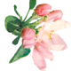 Flowers-049