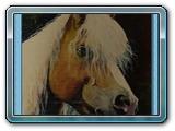 hlava kone hafling